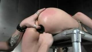 Brunette tied, whipped and probed in bondage scene