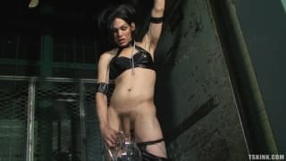Foxi is a transsexual dominatrix