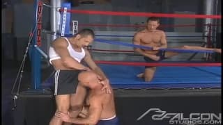 Arpad Miklos in a threesome in a boxing ring