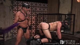Mike DeMarco loves BDSM with Dallas Steele