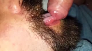 Brunette daddy bear enjoys sucking dick